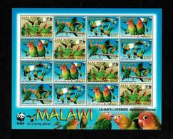 MODERN GEMS - Malawi - 2009 - WWF Lilian's Lovebird - Sheet Of Stamps - MNH (**) - Cuckoos & Turacos