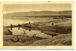 Vue De Palestine - La Mer Morte (  Braun  éditeur ) ( 86) - Palestine