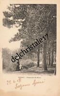 CPA 27 0077 BERNAY - Promenade Des Monts - Précurseur Animée Demoiselle Et Ombrelle Enfant - Non Circulée Dos Non Divisé - Bernay