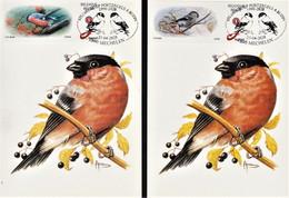"""Reeks Van 2 Maximumkaarten """"Goudvink"""" Met Mannelijke En Vrouwelijke MyStamp Goudvink En Speciale Stempel - 1985-.. Pájaros (Buzin)"""