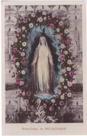 36 - NOTRE DAME DE PELLEVOISIN - Intérieur De La Chapelle - Art Religieux - Maagd Maria En Madonnas