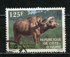 COTE D'IVOIRE : ANIMAUX -  N° Yvert 652 Obli. - Ivory Coast (1960-...)