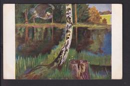 D37 /   Hirth Jugend-Postkarte / Hoess , Nach Dem Gewitter , Fischreiher - Unclassified