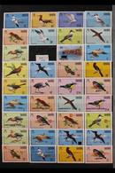 BIRDS OF ANGUILLA 1968-2001 All Different (mostly) Never Hinged Mint Thematic Collection Of Complete Sets And Overprinte - Non Classificati