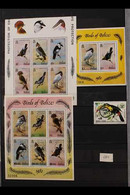 BIRDS OF BELIZE 1977-2009 Lovely All Different Never Hinged Mint Collection Of Thematic Stamps And Miniature Sheets Of B - Non Classificati