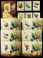 MUSHROOMS (FUNGI) OF AFRICA 1980's To 2010's SUPERB NEVER HINGED MINT All Different Collection. A Delightful Array Of Se - Non Classificati