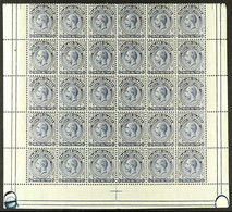 1921-28 (wmk Mult Script CA) KGV2½d Deep Steel-blue (SG 76b) - LOWER HALF SHEET OF THIRTY (6 X 5)showing Plate Screw H - Islas Malvinas