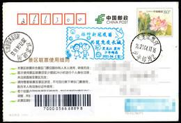"China HeiHe(BlackRiver) City Blue ""Inject The Novel Coronavirus Vaccine To Build A Great Wall Of Immunity"" COVID-19 Chop - Malattie"