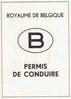 Ancien Permis De Conduire Délivré à La Louvière En 1967 (état Neuf, Jamais Utilisé) - Historical Documents