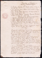 AKTE VERDEELING EN LIKWIDATIE 1868 SINAY - JACOBUS DE SMEDT T.o.v. KINDEREN DE SMEDT - Historical Documents