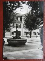 Weimar - Schillers Wohn- Und Sterbehaus, Gänsemännchenbrunnen - Weimar