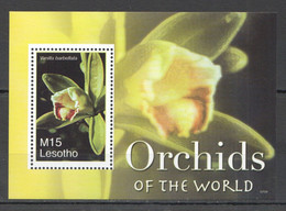 WW896 2007 LESOTHO FLOWERS ORCHIDS OF THE WORLD FLORA BL MNH - Orchideen