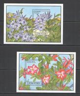 A176 LESOTHO BEAUTIFUL FLOWERS LEADWORT DESERT ROSE FLORA 2BL MNH - Orchideen
