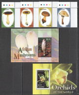 A178 2007 LESOTHO AFRICAN MUSHROOMS FLORA NATURE FLOWERS ORCHIDS OF THE WORLD 2BL+SET MNH - Orchideen