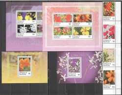 VV814 ANTIGUA & BARBUDA FLORA FLOWERS ORCHIDS !!! 2KB+2BL+1SET MNH - Orchideen