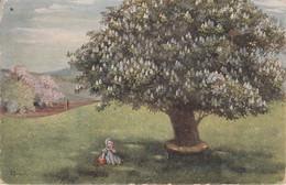 Châtaigne En Fleur (illustrateur Frank) - Frank, Elly