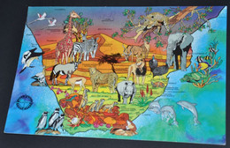 South Africa - Wild Heritage - Afrique Du Sud
