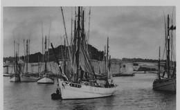 CONCARNEAU - Les Thoniers Au Port  -TBE - Concarneau