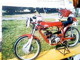 1969 MOTO  GUAZZONI MATTA 50 Fotografica Viaggiata B 150ç Circolo S Pietro  VB2020  IC7267 - Motorfietsen