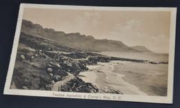 Twelve Apostles & Camp's Bay, C.C. - Afrique Du Sud