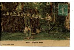 Landes Chasseurs De Palombes  Carte En L'état Déchirure - Hunting