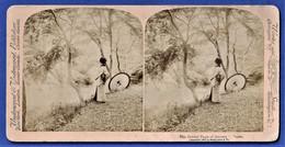 PHOTO STEREOSCOPIQUE, STEREOVIEW - The Golden Days Of Autumn, Japan / Japon - Stereoscopio