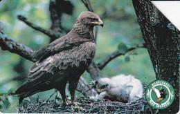 TARJETA DE POLONIA DE UN AGUILA (BIRD-PAJARO) EAGLE - Aquile & Rapaci Diurni