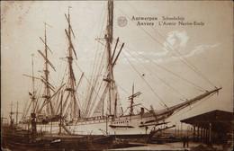 Antwerpen - Anvers, L' Avenir (schoolschip, Navire-Ecole) (ed. Albert) - Antwerpen