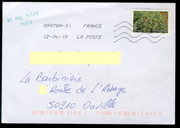 France Oblitéré Sur Enveloppe - Y&T N° A693 - Flore, Fruits De France Et Du Monde - Dattes - Sin Clasificación