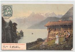 Vierwaldstättersee Und Urirotstock - Bergbauern -  Bergweide - Fronalpstock - UR Uri