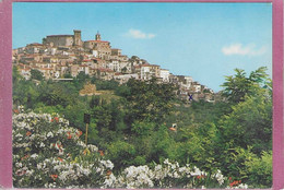 CASOLI ,- Panorama - Chieti