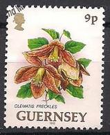 GB - Guernsey  (1993)  Mi.Nr.  603  Gest. / Used  (9ew81) - Guernsey