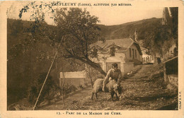 42 -  VALFLEURY - PARC DE LA MAISON DE CURE - Otros Municipios