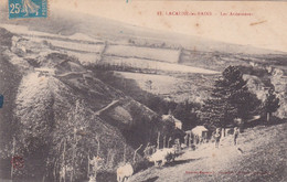 Tarn : LACAUNE Les BAINS : Les Ardoisières : Animation - Vaches - Other Municipalities