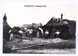 Reprise CPA Collection Ligneau 3009 Le Battage En Beauce - Paesani