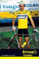 CYCLISME: CYCLISTE : FLAVIO GIUPPONI - Cycling