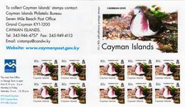 Cayman Islands - 2006 - Birds - Caribbean Dove - Mint Self-adhesive Definitive Stamp Booklet - Cayman Islands