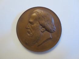 Herinneringspenning Professor Van Beneden - Elongated Coins