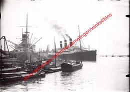 Red Star Line - Antwerpen - Photo 17,5x12,5cm - Belgenland In Antwerpen - Bateaux