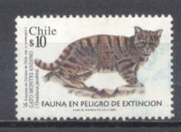 Chile, Fauna En Peligro De Extinción - Chile