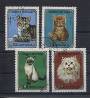 Mongolia,  Mongolei,  1979,  Animals, Cats - Mongolia