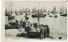 CPA -29 - DOUARNENEZ - Le Grand Port  - - Douarnenez