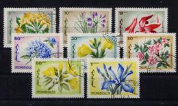 Mongolia,  Mongolei,  1966,   Blumen,  Flowers - Mongolia