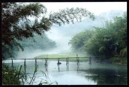 China Bamboo Grove,River,Bridge Postcard /Bambushain,Fluss,Brücke Postkarte - China