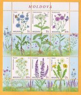 2016  Moldova Moldavie Moldau.  Wildflowers Of Moldova.  Sheet  Mint - Moldova