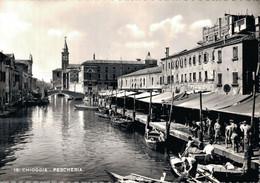 H1704 - ITALIE - Tabaccheria Al Duomo - Chioggia Pescheria - Other