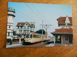 TRAM + LE COQ  DE HAAN: PHOTO REPRO D'APRES NEGATIF DU TRAM A  LA STATION DU COQ LE 18/08/1976 - Tramways