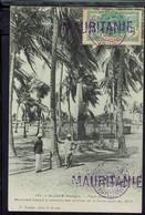 """Affranchissement Faidherbe 5 C Sur CPA """"St Louis, Place Germain"""" Cachet Sélibaby 30 Avril 1909 - Corr. Pour La France. - Briefe U. Dokumente"""