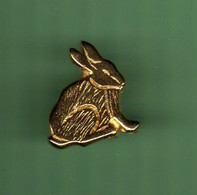 LAPIN *** N°3 *** 2081 - Tiere