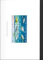 Pitcairn Islands 2007 Ocean Fish Miniature Sheet Large Imperforate Proof In Folder - Pitcairn Islands